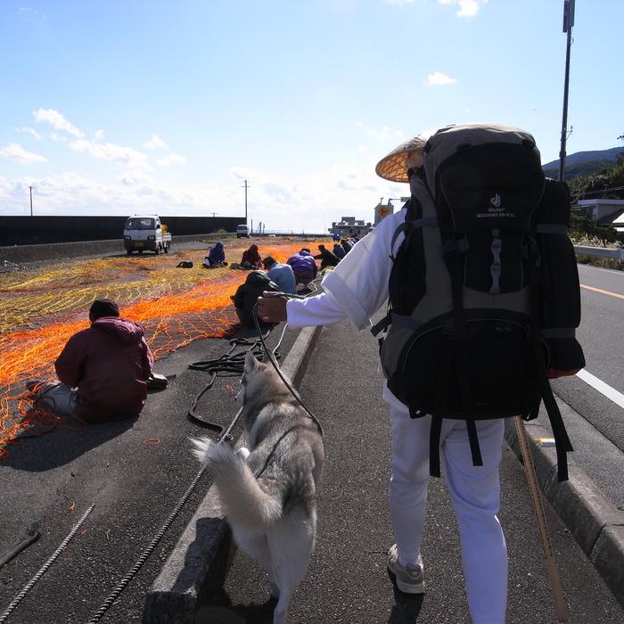 Memory of the second pilgrimage with husky HANA_c0049299_1112927.jpg