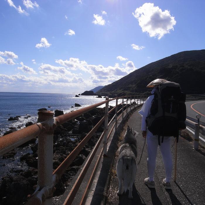 Memory of the second pilgrimage with husky HANA_c0049299_11132731.jpg