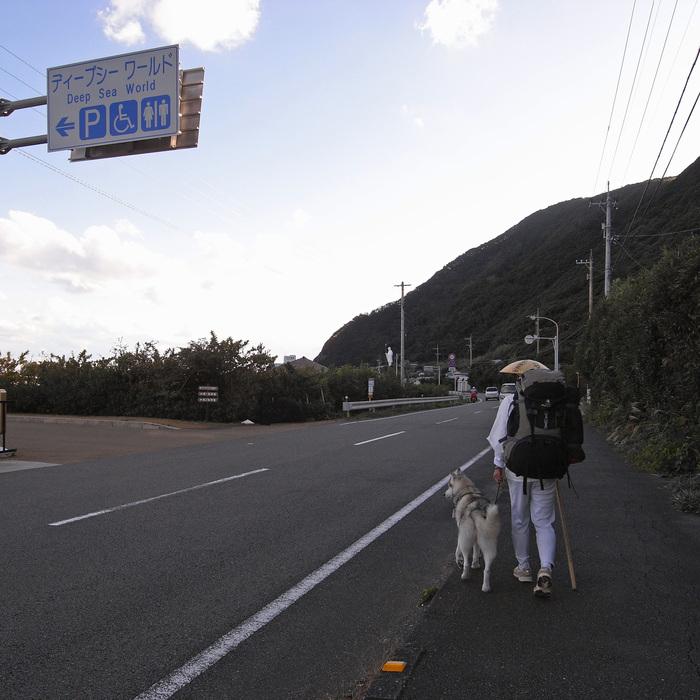 Memory of the second pilgrimage with husky HANA_c0049299_1115185.jpg