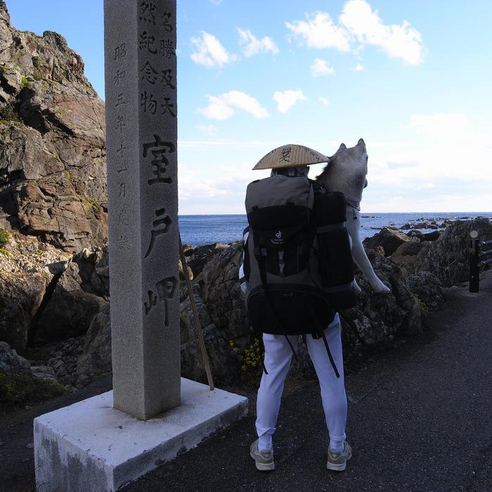 Memory of the second pilgrimage with husky HANA_c0049299_1117663.jpg