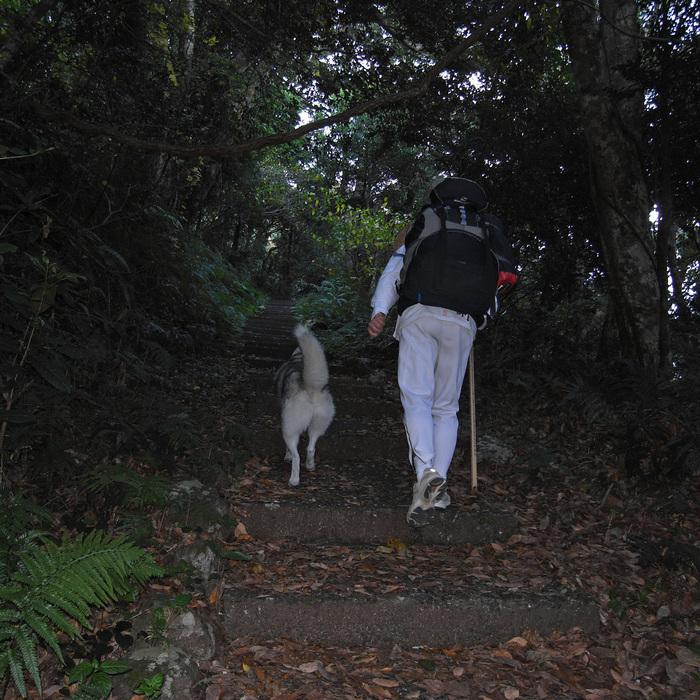 Memory of the second pilgrimage with husky HANA_c0049299_11195645.jpg