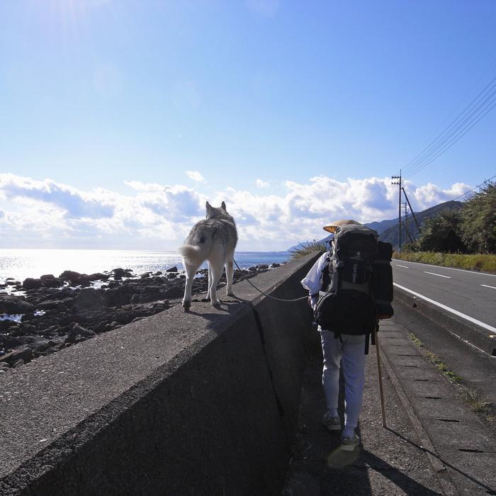 Memory of the second pilgrimage with husky HANA_c0049299_1162096.jpg