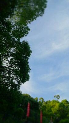 猛暑日_c0130705_749847.jpg