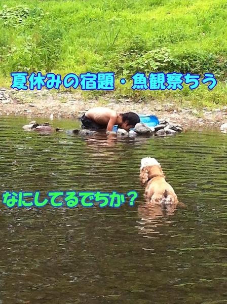 b0067012_055060.jpg