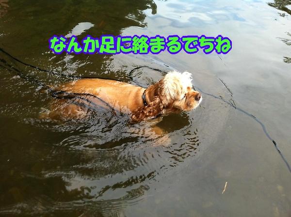 b0067012_1123280.jpg