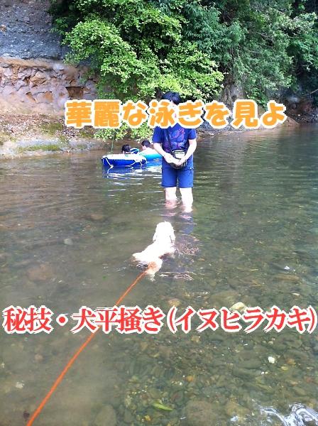 b0067012_1132079.jpg