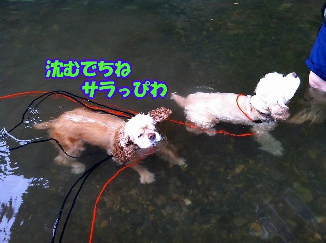 b0067012_1251247.jpg