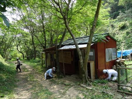 広場の草も昆虫たちのために残して刈る  in  孝子の森_c0108460_181157.jpg