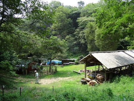 広場の草も昆虫たちのために残して刈る  in  孝子の森_c0108460_1812179.jpg