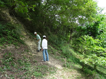 広場の草も昆虫たちのために残して刈る  in  孝子の森_c0108460_18132711.jpg