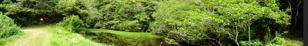 広場の草も昆虫たちのために残して刈る  in  孝子の森_c0108460_1871046.jpg