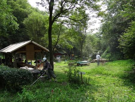 広場の草も昆虫たちのために残して刈る  in  孝子の森_c0108460_1895396.jpg