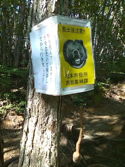 クマの足跡かもぉ~と大盛り上がり@^-^@(野うさぎのようでした^^;)_f0061067_1927834.jpg