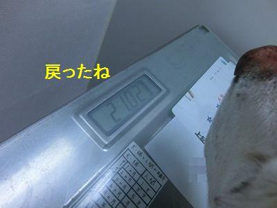 e0222588_1045754.jpg