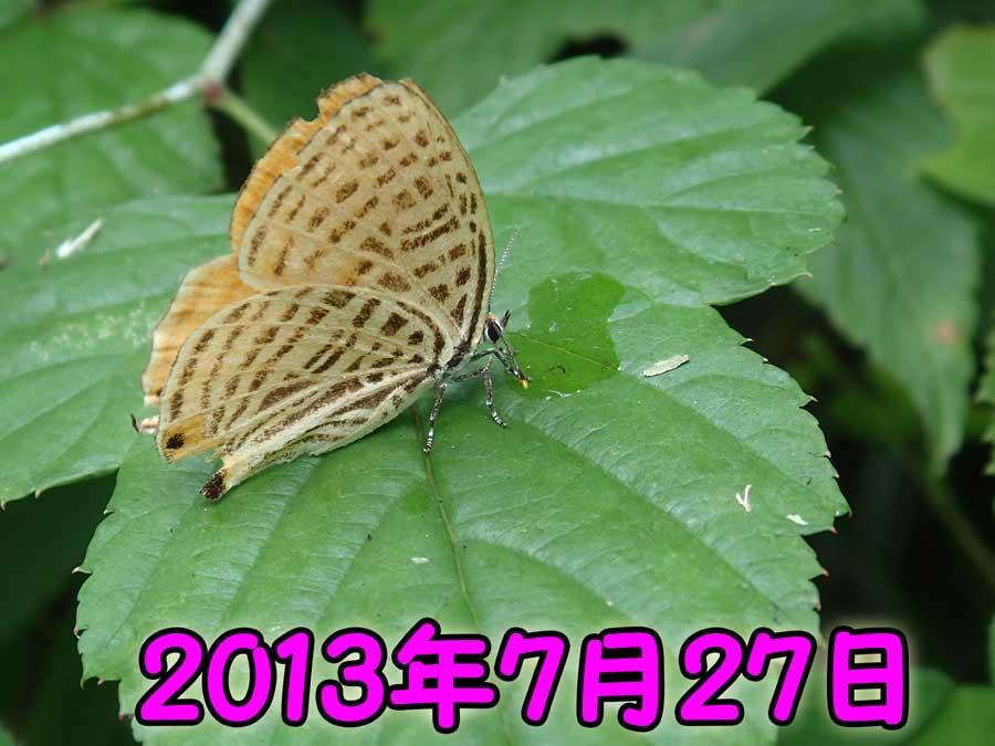 e0253104_23125060.jpg