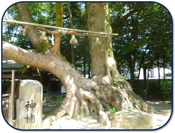 国宝!青井阿蘇神社♪_b0228113_11402691.jpg