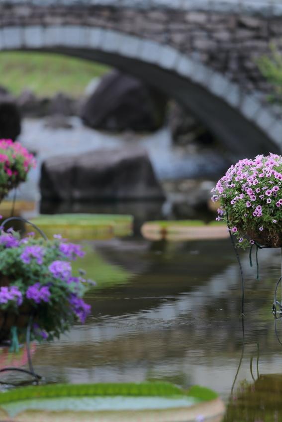 silent garden_c0171945_2172213.jpg