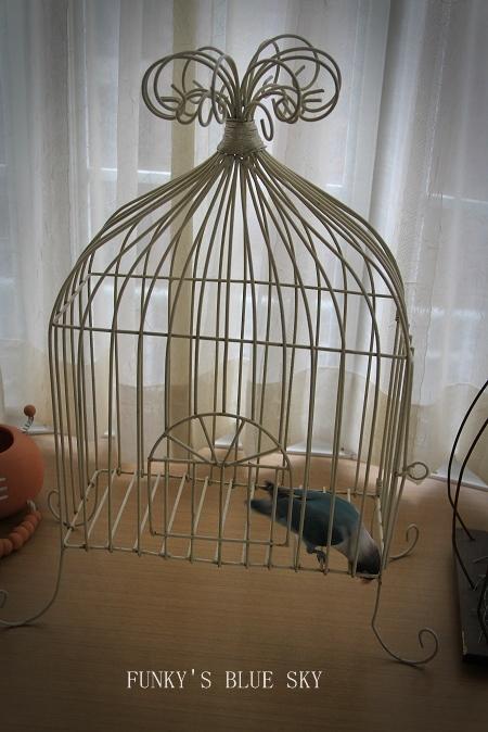 水浴(び)B.Bの記録 → 新しい鳥カゴ!? (続・6月23日)_c0145250_112214100.jpg
