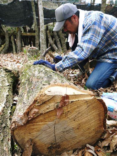 株式会社旬援隊 原木しいたけの本部伏せ作業、頑張りました!!_a0254656_1822298.jpg