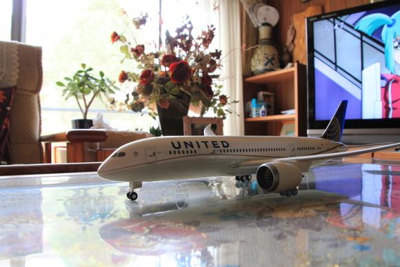 B787-8  ユナイデット航空 _d0202264_7531166.jpg