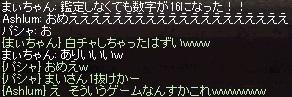 a0201367_091879.jpg