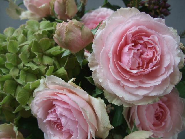 オークリーフ(アンティークピンクのバラを入れて)_f0049672_11282120.jpg