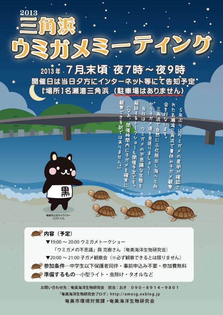 三角浜ウミガメミーティング本日7/27開催!_a0010095_2401490.jpg