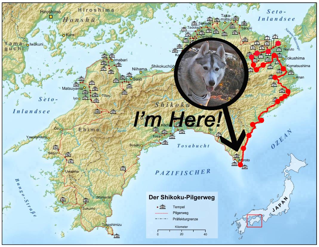 Memory of the second pilgrimage with husky HANA_c0049299_1522784.jpg