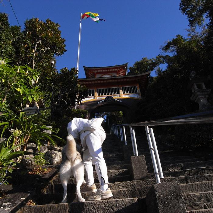 Memory of the second pilgrimage with husky HANA_c0049299_19224625.jpg