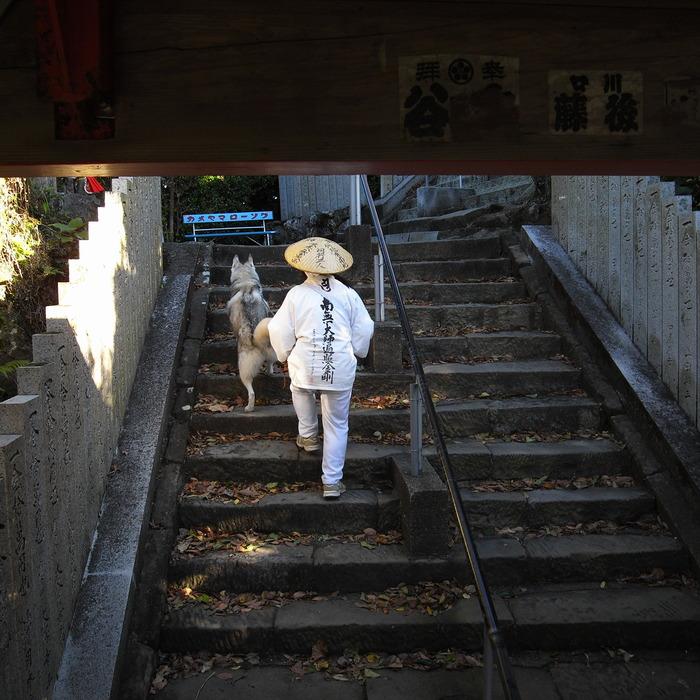 Memory of the second pilgrimage with husky HANA_c0049299_19261029.jpg