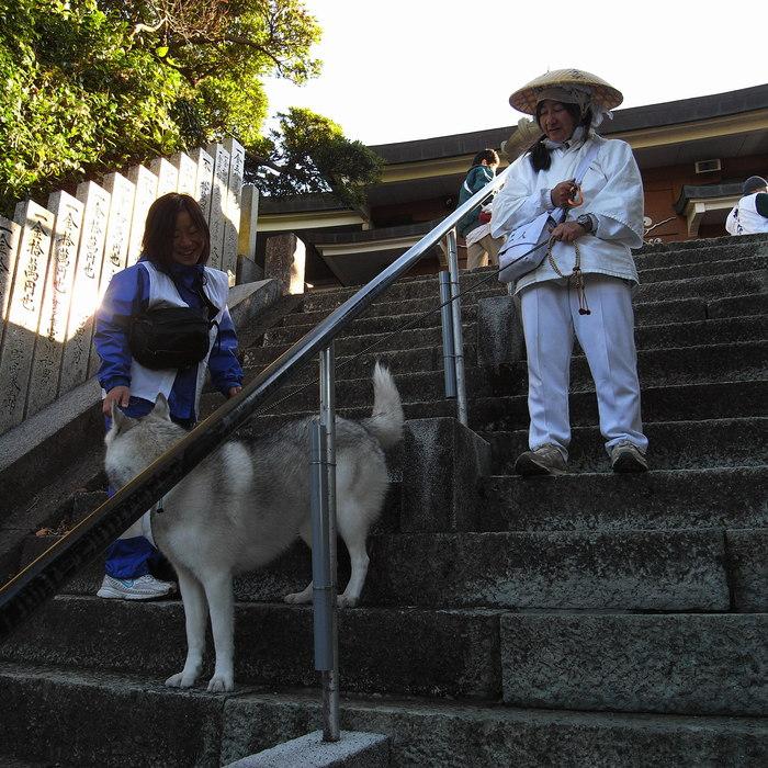 Memory of the second pilgrimage with husky HANA_c0049299_19265878.jpg