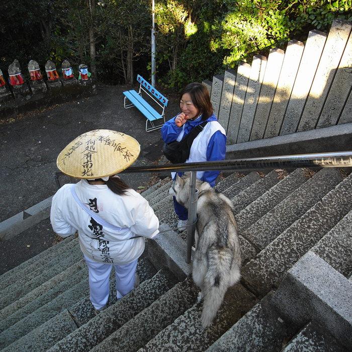 Memory of the second pilgrimage with husky HANA_c0049299_19273966.jpg