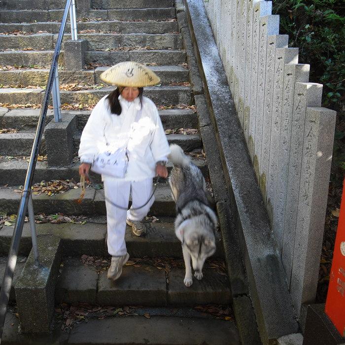 Memory of the second pilgrimage with husky HANA_c0049299_1928261.jpg