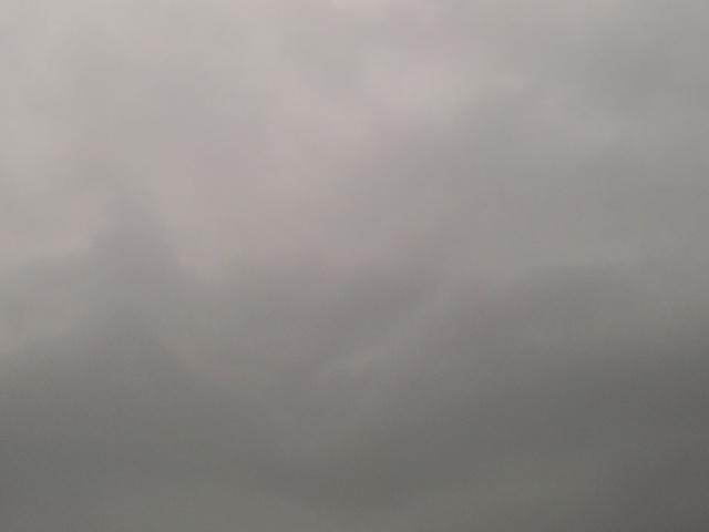 雷ゴロゴロ曇り空(≧∀≦)_c0140599_11473698.jpg