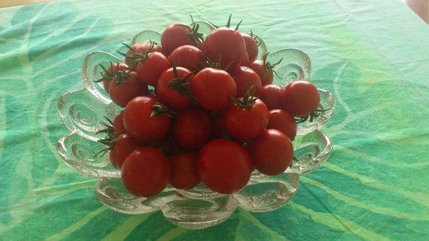 大好きなトマト!!!_e0131324_11224559.jpg