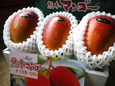 熊本の最旬「美味かもん」をご紹介 vol.7_a0254656_1747236.jpg