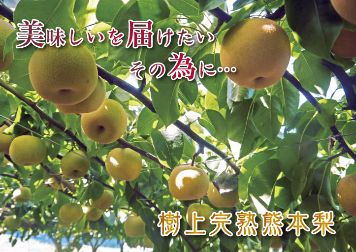 熊本の最旬「美味かもん」をご紹介 vol.7_a0254656_17501630.jpg