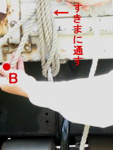 e0066858_168752.jpg