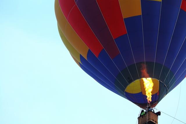 ハスと熱気球_c0196076_22162949.jpg