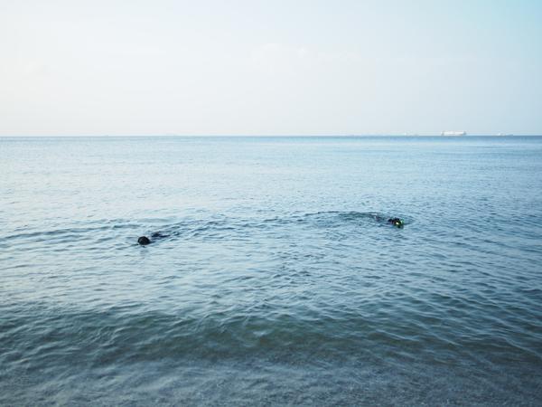 海を堪能した週末_c0050400_17465366.jpg