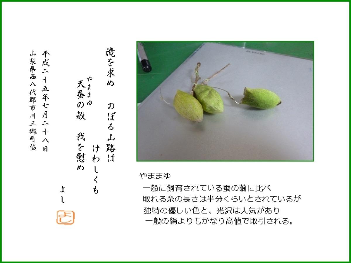 e0033229_210544.jpg