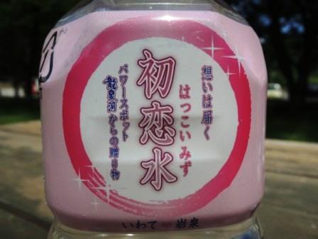 想いは届く、「初恋水・百恋水」 ~パワースポット龍泉洞から~_b0206037_131733.jpg