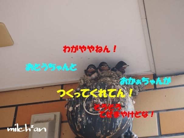 b0115642_22211814.jpg