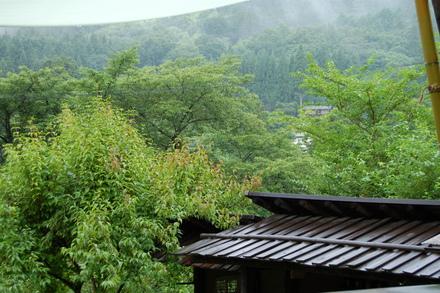 涼しい雨日和_d0249047_935303.jpg