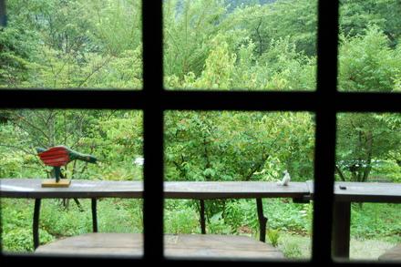 涼しい雨日和_d0249047_9591613.jpg