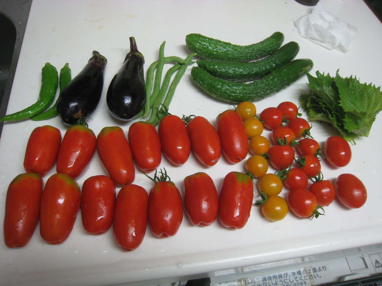 収穫物で色々と調理実習~_e0121558_23142636.jpg