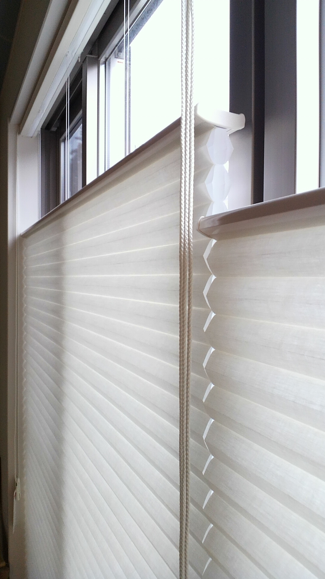 窓辺の断熱対策に効果絶大「デュエット・アーキテラ」_c0157866_2351423.jpg