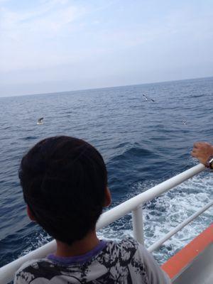 初島2013_a0004374_18152420.jpg
