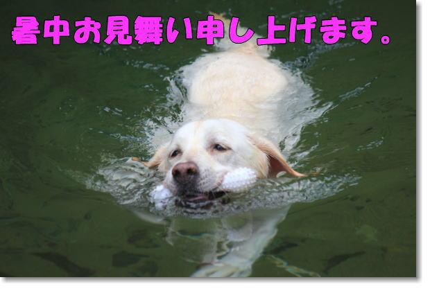 b0136683_22202130.jpg