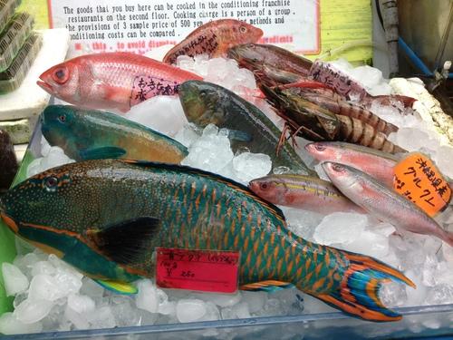 沖縄2_f0018889_1422491.jpg